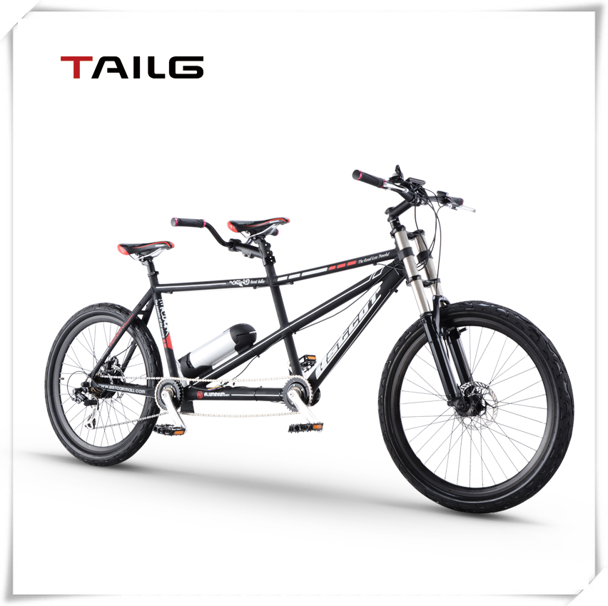 lithium battery bike